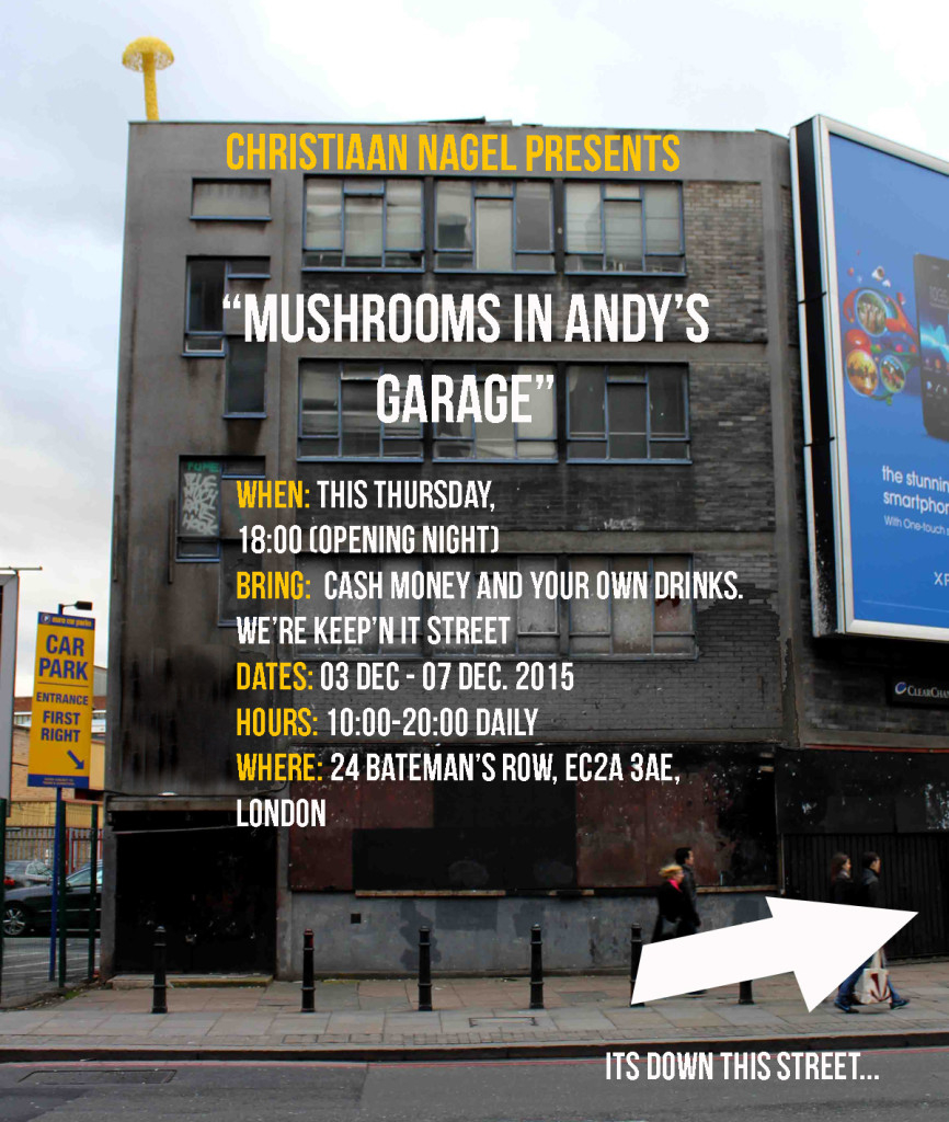 Mushrooms-in-andy's-garage